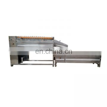 Taizy vegetable washing machine/brush type ginger washing and peeling machine/ginger peeling machine