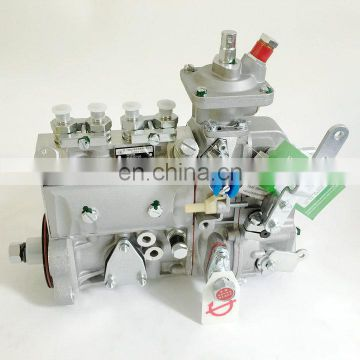 4BT 3.9 Diesel Engine Parts Fuel Injection Pump 3973846