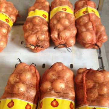 Fresh Yellow Onion in 25kg/Mesh Bag