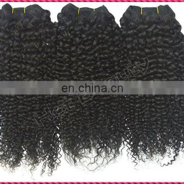 Private Label Products Kinky Curly Hair Weaving