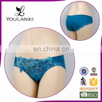 Customized Comfortable Classical Transparent Polyester Romantic Sexy Young Girls Underwear Panties Model