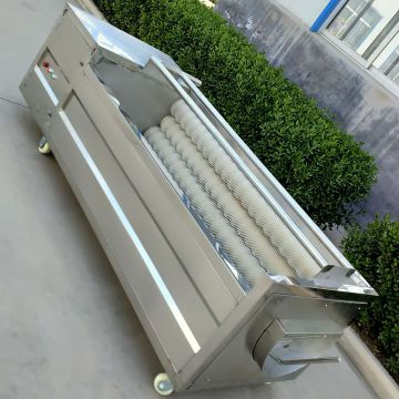Cleaning Fruits And Veggies Commercial Conveyor