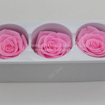 A grade preserved roses with Customized color long lasting flower inartificial ecuadorian roses