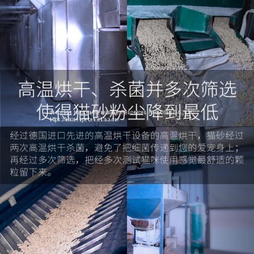 Haosen Tofu Cat Litter Export Quality OEM Foundry