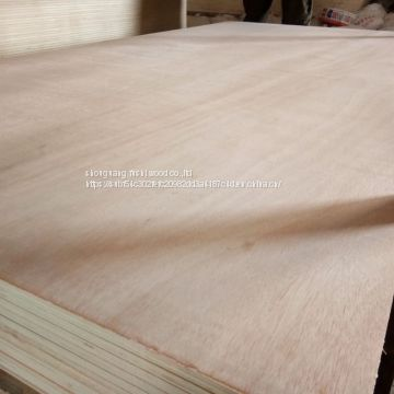 Plywood with Pine Face And Back at Wholesale