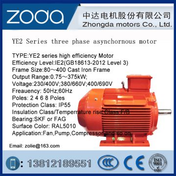 YE2 Series Low-Voltage AC Motor zoda MOTOR