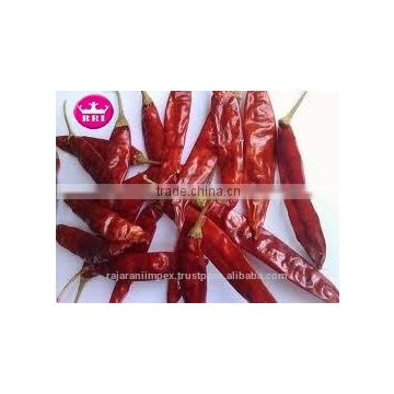 SANNAM/S4 Nature red strong taste dehydrated export dried red chilli