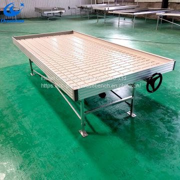 Standard ebb and flow rolling benches in greenhouse rolling tables