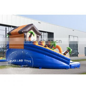 Lovely Design NEVERLAND TOYS Inflatable Water Slide Inflatable Pool
