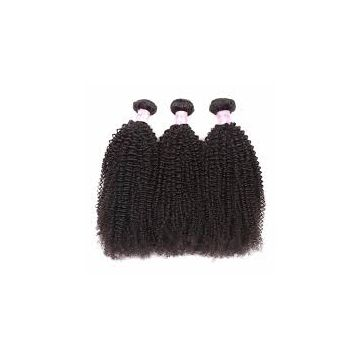 Cambodian Front Lace Human Hair Afro Curl Wigs 10-32inch No Mixture Double Wefts