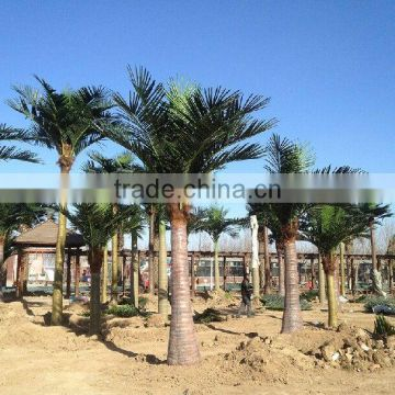 Hot sale artificial coconut tree,faux coconut tree