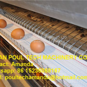 South Africa Poultry Farming -  Full Automatic H Frame Layer Cage & Chicken Cage & Hen Coop & Laying Hen Cage in Chicken Shed
