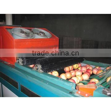 fruit washing drying machine/vegetable grading washing machine