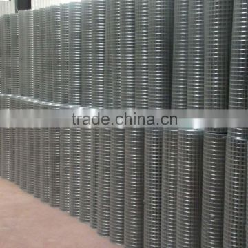 Free sample piece/304 Stainless steel wire netting / AISI316 304 Welded wire mesh/SS wire mesh filter