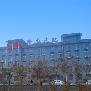 Hebei longgu auto parts import and export trade co.,ltd.