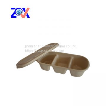 biodegradable take out food packaging box