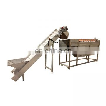 Taizy brush washing type commercial root vegetable peeling machine