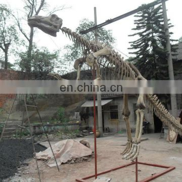2015 Outdoor playground equipment dinosaur skeleton for sale