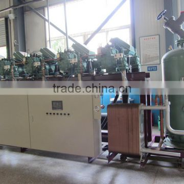 bitzer parallel compressor condensing unit cold room cold storage with hot promotion