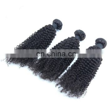 free sample Unprocessed Virgin bundles brazilian Curly Hair Wholesale Natural Curly Hair Extensions 100% brazilian Human Hair