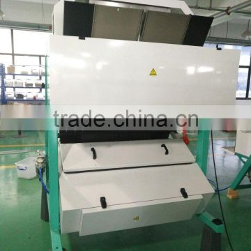 Easy to use 2 chutes chicory cubes ccd camera color sorter machine
