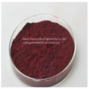 Cyanocobalamin  Vitamin B12 bulk powder medical Grade