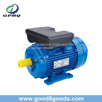 Ml Aluminum Body 220V Electric Motor for Europe