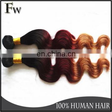 High quality colored brazilian hair extension rainbow lady human hair wholesale