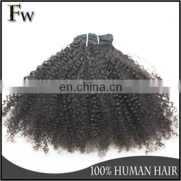 Virgin brazilian hair weave remy human hair afro kinky curly clip in hair extensions for black women