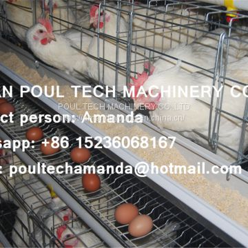 Tanzania Poultry Farm Hot Galvanized Cage & A Type Battery Cage Layer Breeding Chicken Cage & Coop for Poultry Farm