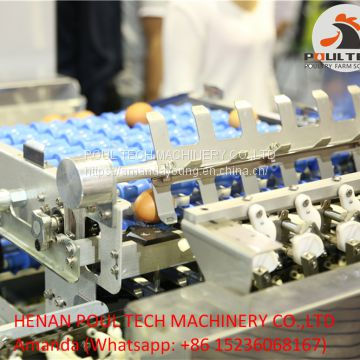 Egg Grading Sorting Machine for Chicken Farm
