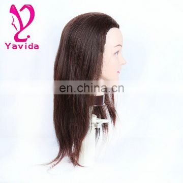 BeautymaxHair wholesale price human hair training head