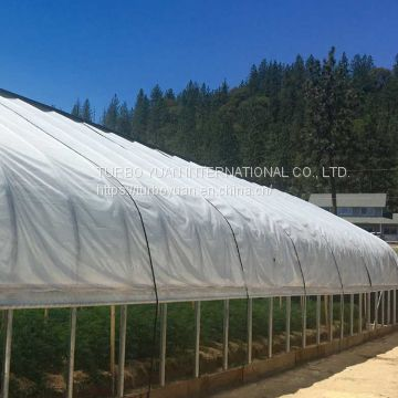 anti-dripping PE greenhouse polyethylene film sheets / clear plastic greenhouse covering