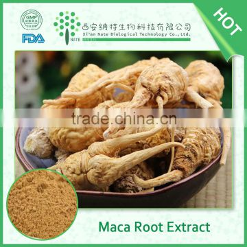 Gold supplier wholesale Man Healthy Food Maca Powder, Maca extract powder 20:1
