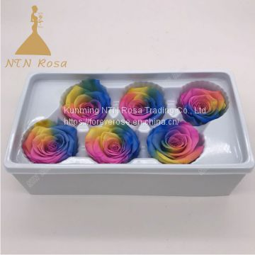 Wholesale Eternal Rose Preserved FlowersEternal Rose For Sale