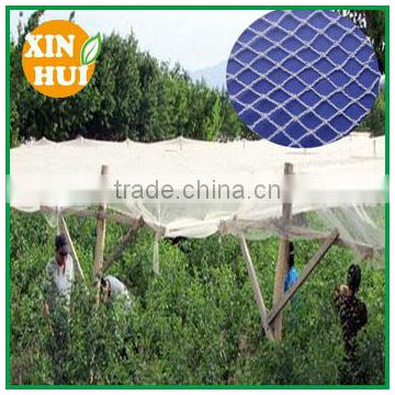 2016 hot sale plastic fabric anti hail net for apple tree