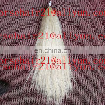 Coloured horse tail hairs for hot selling