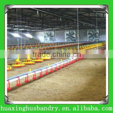 best quality and cheap price broiler chicken raised floor system