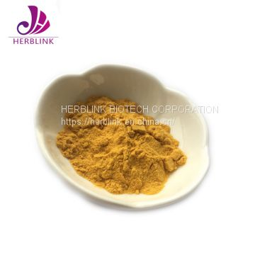 High Quality Good Price Seabuckthorn Fruit Powder