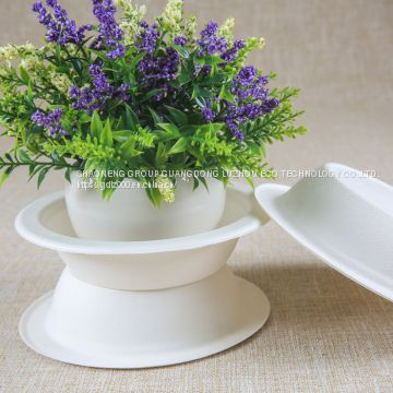 Biodegradable Bagasse Soup Bowl