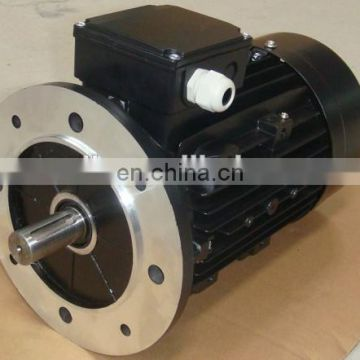 MS series 0.25hp small induction motor