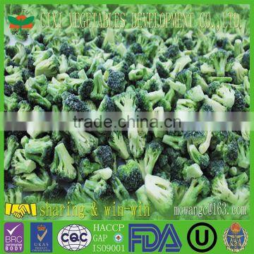 china supplier Frozen Broccoli