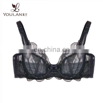Design Your Own Band Lingerie Bra Hot Sexy Bra Stylish Bra Sexy Net Bra