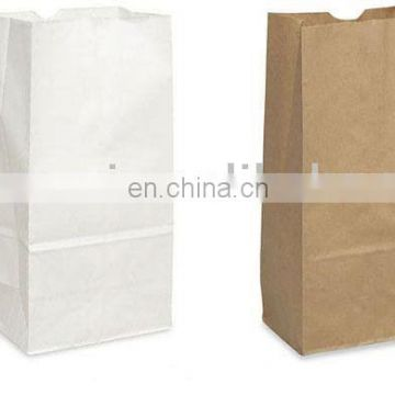 Kraft paper bag, brown paper bag