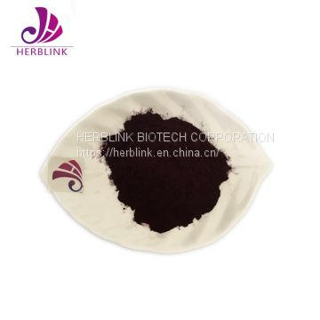 100% Natural BIlberry Extract Powder