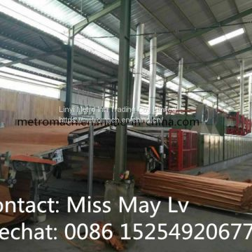 Wood veneer roller conveyor dryer machine