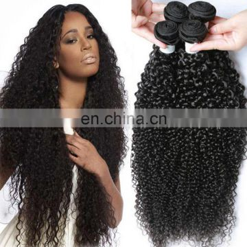 Factory Wholesale Virgin kinky Curly Hair Brazilian Human Hair bundles curly hair bundles