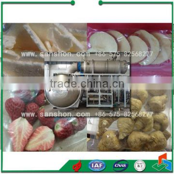 China All Kinds of Fruit Vacuum Freeze Dryer,Freeze Drying Machine For Fruit