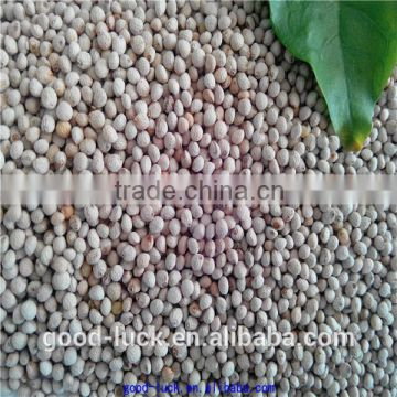 high quality perilla seed on hot sale