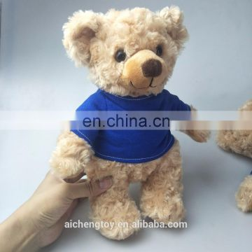 25cm standing size Eddy the Teddy bear toys with t-shirt and pants